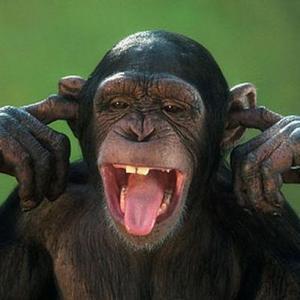 PionerProdukt / ПионерПродукт - Шимпанзе бросила курить