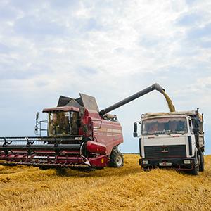PionerProdukt / ПионерПродукт - Оперативная информация о ходе уборочной: в Пензенской области получено 138 тыс. тонн зерна