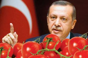 PionerProdukt / ПионерПродукт - Россия вновь заподозрила Беларусь в реэкспорте турецких помидоров