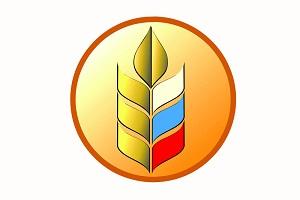 PionerProdukt / ПионерПродукт - Белгородцы готовы наращивать производство овощей